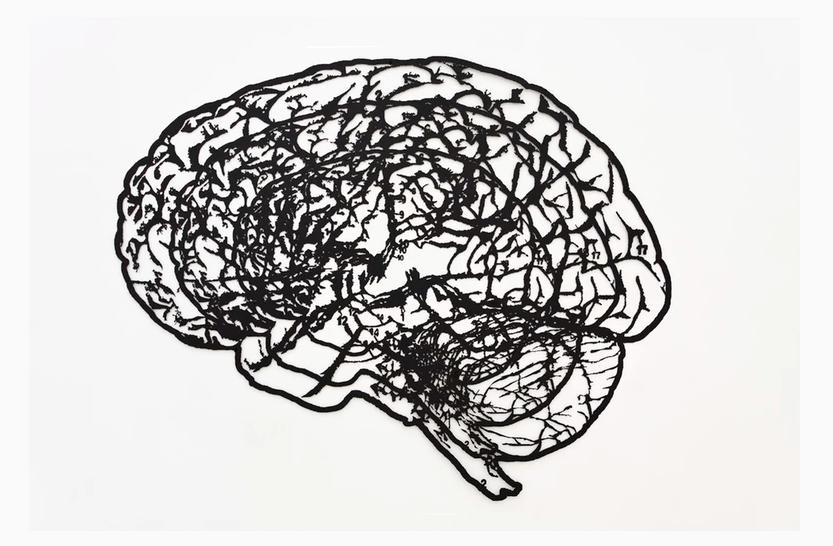 Правдолюв Иванов - A Thought Within a Thought Within a Thought, 2008